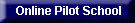 Online Pilot Training Flight School