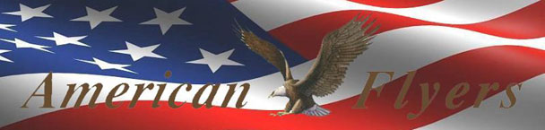 eagle and flag 1